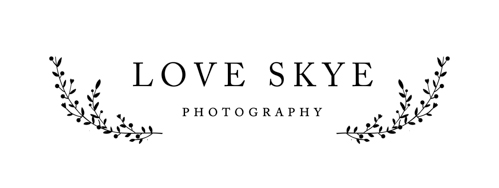 Love Skye Photography logo